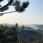 san fran from a distance - mount tamalpais